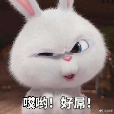 下载一波超可爱的小表情大全女生分享兔子表情动漫图片动态包图片