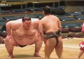 日本相扑比赛,两者相差150公斤 真的是小巫见大巫!