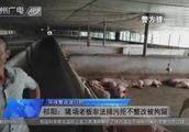 祁阳:猪场老板非法排污拒不整改被拘留