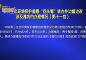"""中央生态环境保护督察""""回头看""""转办件边督边改涉及潍坊办理情况"""