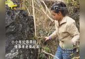 阿元无法忍受的牛棚味道女孩10岁已在这里干活,坚韧性格令人敬佩
