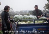 大叔收了一车萝卜和青椒,看看去集市上能卖多少钱?