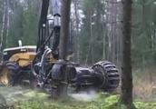 炫酷机器人一秒砍断树干,这个世界已经不需要人类了
