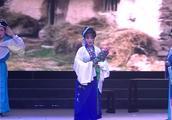 扬剧《状元认母》片段 扬州市扬剧团演出