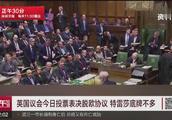 英国议会今日投票表决脱欧协议 特蕾莎底牌不多