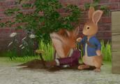 狐狸托德竟然害怕一只小蜗牛,吓得他从洞里出来不敢再下去