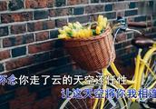 广东雨神伤感情歌《广东爱情故事》唱出多少痴情人的心,听完哭了