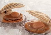 有什么介绍美食和海鲜的广告词?