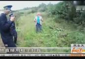 云南:一袋板栗引发冲突,侄子婶婶刀棍相见