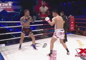 外国拳王无法承受昆仑决小将的重拳打击,连续低扫后直接倒地不起