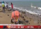 """新年话奋斗:海滩""""清道夫"""",守护一方净土"""