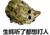 """""""蚝""""无人性,中国生蚝比国外生蚝便宜多少?"""
