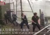 组队与老虎拔河引争议 园方:大惊小怪!动物们很喜欢