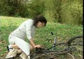 木棉花的春天:榕树底下美好的回忆,如今佩云却一点也想不起来