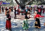 公园里上演舞林大会!看看那个舞蹈更专业?