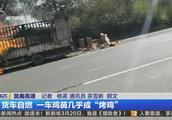 一辆满载鸡苗的货车发生自燃,一车鸡苗差点都变成了