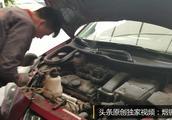 为什么修理工不愿意维修标致雪铁龙?修理工说出理由,让人揪心