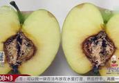 得霉心病的苹果吃了容易导致中毒,那我们应该如何分辨呢?