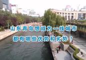 山东青岛想成为一线城市,都有哪些优势和劣势?