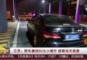 交警查车吓一跳:轿车严重超载,后座竟塞满了62头活蹦乱跳的猪崽