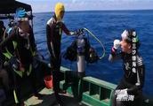 西沙群岛的北岛海域,海龟上岸产卵,吸引着全国各地的研究者