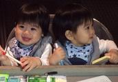 林志颖双胞胎儿子越长越可爱,两个萌萌哒的小正太