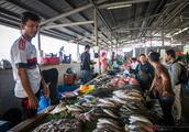 沙巴最大鱼市,亚庇中央海鲜市场,鱼贩不吆喝却为何都站在柜台上