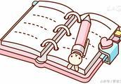 我是小小收集员日记200字