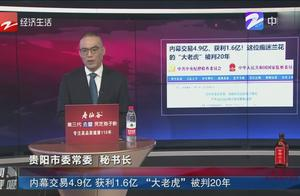 """内幕交易4.9亿 获利1.6亿 """"大老虎""""被判20年"""