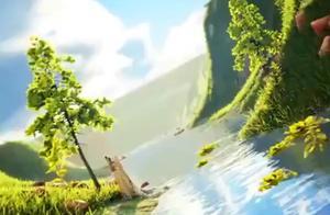 杭州西湖,人间的天堂!