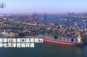 【津云微视·警法】重拳打击港口黑恶势力 净化天津营商环境
