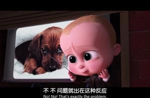宝贝老板:宝宝们要从狗狗那夺回,人类对宝宝的爱