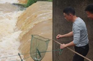 农村小伙进城买兽药,4位大叔江中浑水抓鱼,这才是捕鱼高手