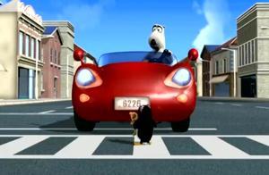 倒霉熊:倒霉熊过马路,等红绿灯的过程太逗了!