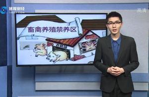 网传农村全面禁止养殖猪和鸡?事实是只有在这些区域才禁养……