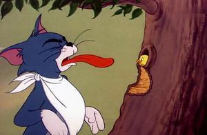 丑小鸭觉得自己太丑想自杀,想让汤姆吃掉自己,都被杰瑞救下了!