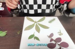 只需要几分钱,就能制作出好看漂亮的植物印染水彩画,印象派画风