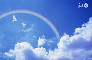 科技小论文——彩虹是怎样形成的 彩虹是怎样形成的科学小论文