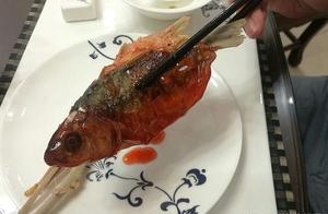 中午和朋友吃了飞鱼味道太好了 飞鱼原来是这种鱼做的
