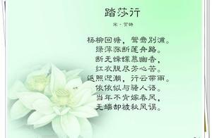 咏荷的诗句诗词网 关于咏荷的诗句有什么