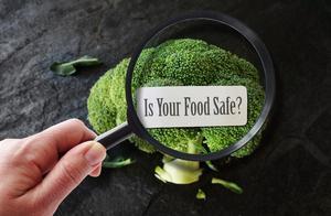 """这些""""食品安全+健康""""的新热点你都知道吗? 聚焦2019年国际食品安全与健康大会"""