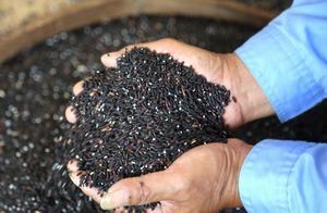 """黑米之所以被称为""""长寿米"""",其实原因就这4个"""