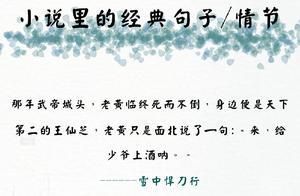 姿三四郎经典语录 求小说中的经典语录