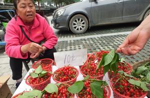 三峡大瀑布旅游景区摄影:游客向农民购买带枝叶樱桃 5元一斤