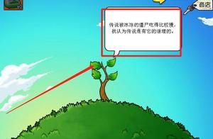 """植物大战僵尸:10000金币的智慧树,却换来了一文不值的""""智慧"""""""