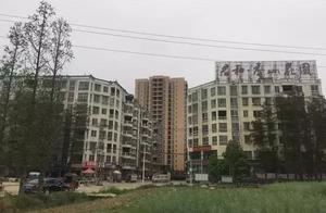 权与法:市委书记批示房地产违建大案,原副市长等12名干部被处理