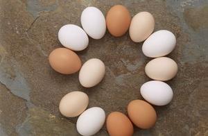 2019年4月24日全国鸡蛋价格