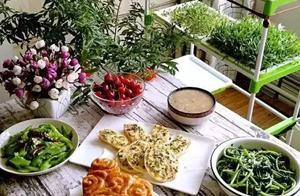 """在家种菜,不用土不用肥 ,""""一张纸""""就搞定,蔬菜能吃一整年!"""