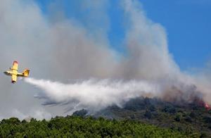 意大利两名青年烧烤引发山火,每人被罚1350万欧元巨款