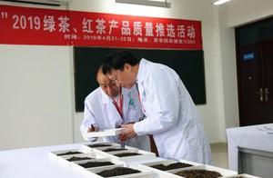 2019年全国名优(绿、红)茶产品质量推选活动在信阳农林学院举行